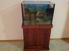 Fish Tank with assorted fish Tarleton Latrobe Area Preview