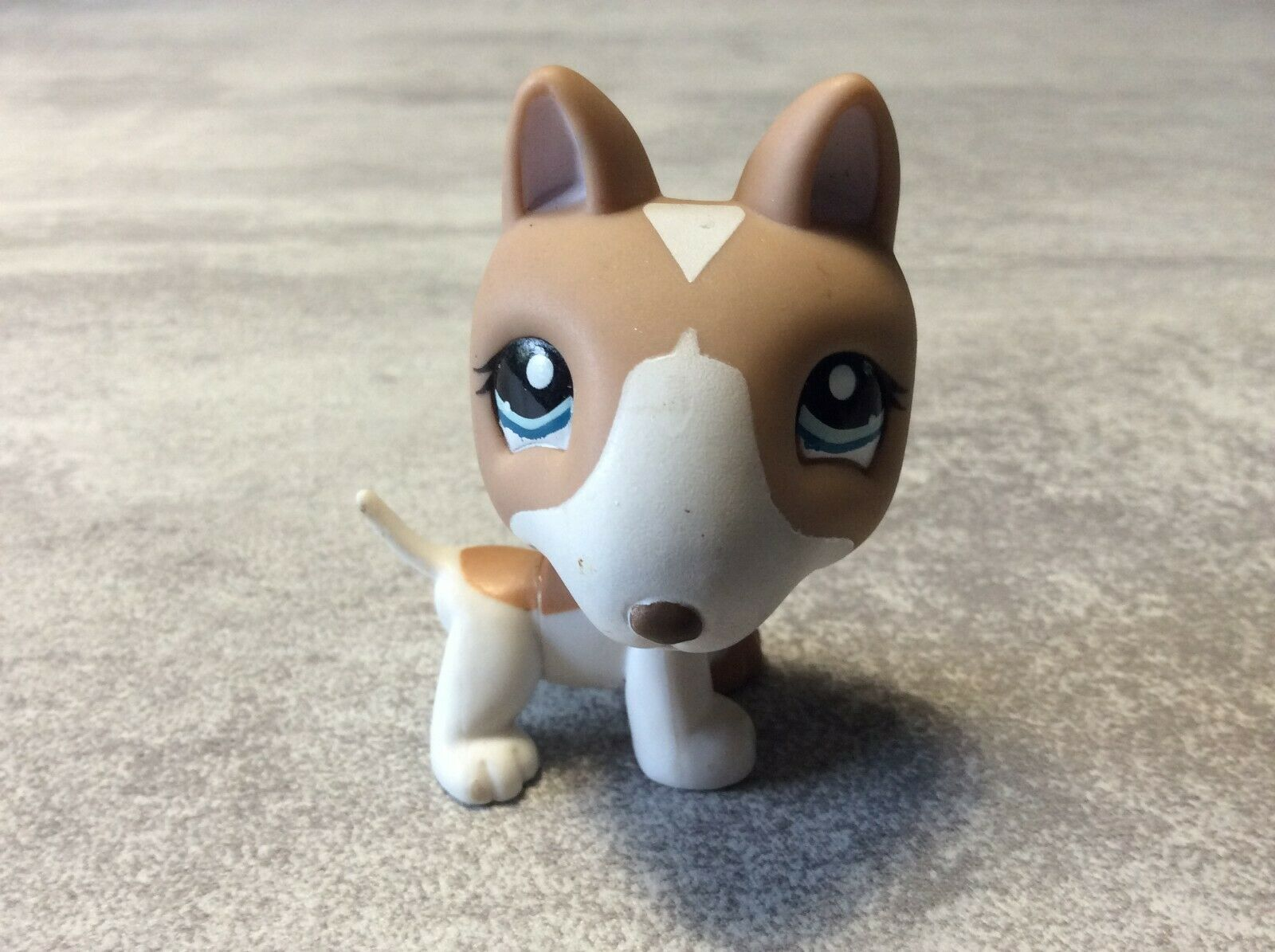 Littlest petshop chien dog bull terrier # 1095 lps pet shop hasbro en loose