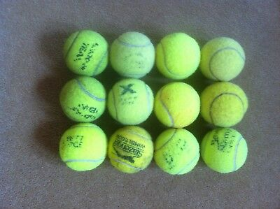 Used tennis balls suitable for dogs and fun