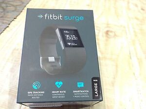 Fitbit surge Mayfield West Newcastle Area Preview