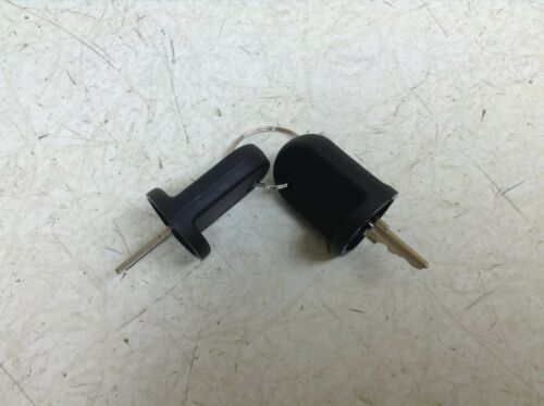 Ezgo RXV Electric & Gas Golf Cart 2008-UP Key 611282 Set of 2 Keys New (TSC)