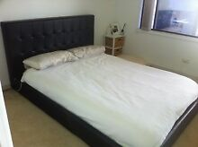 Bed frame (Queen) Gosford Gosford Area Preview