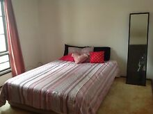 Room for Rent Kings Langley Blacktown Area Preview