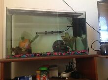 Fish tank with everything including two fish and a stand Windaroo Logan Area Preview