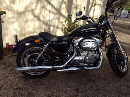 Harley  Davidson 883 super low  2015  -AS NEW Lara Outer Geelong Preview