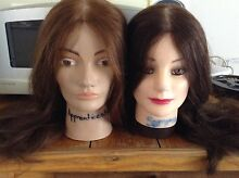 Hairdressing mannequins  Wantirna South Knox Area Preview