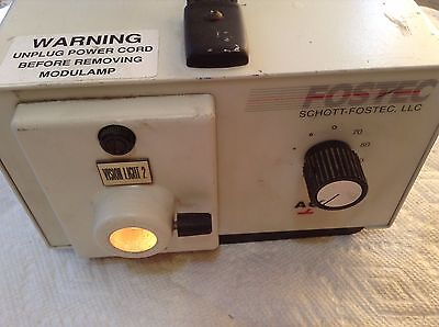 Fostec Shott 20500 150w Lamp