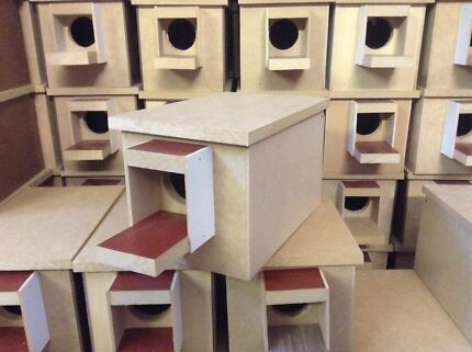 Breeding Boxes For Budgies Budgie Breeding Nest Box