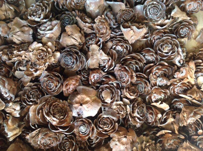 100 Cedar roses cedar rose pine cone Wood Rustic Wedding Flowers Wooden Rose