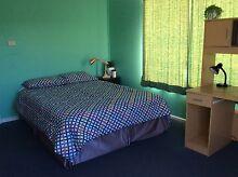 Furnished room walk to AMC UTAS free net share house Mowbray Launceston Area Preview