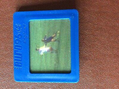 Używany, G1Q Trade card kellogg's euro 96 virtual video no 12 tom boyd  na sprzedaż  Wysyłka do Poland