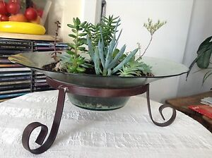 Succulents in a sunken bowl Lenah Valley Hobart City Preview