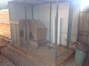 Larger Chicken Coop/aviary. Brookfield Melton Area Preview