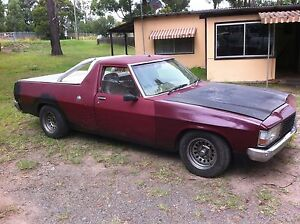 Holden WB Kingswood Ute Martins Creek Dungog Area Preview