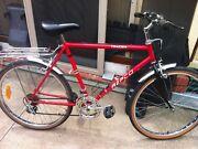 Bieutiful repco bike tracer Dingley Village Kingston Area Preview