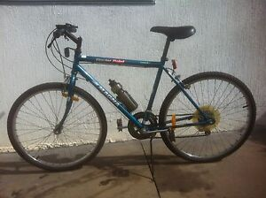 ADULT BICYCLE MAGNA-10-SPEED Liverpool Liverpool Area Preview