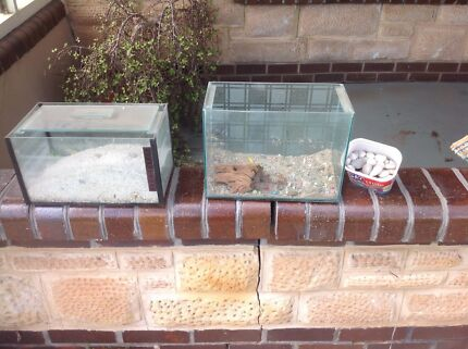 Pair of fish tanks and contents Manningham Port Adelaide Area Preview