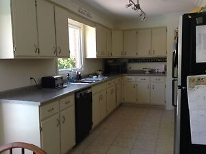 Kitchen cupboards, hardware and counter