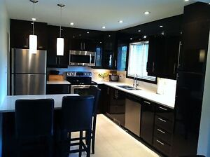 Amazing kitchen cabinets and more!