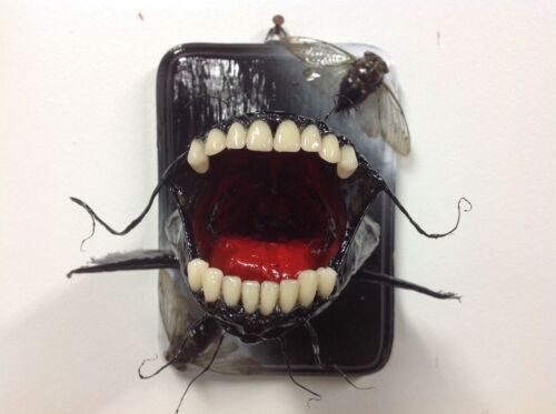 BullHead Catfish with narly teeth. Oddities, bad taxidermy, gift, unique