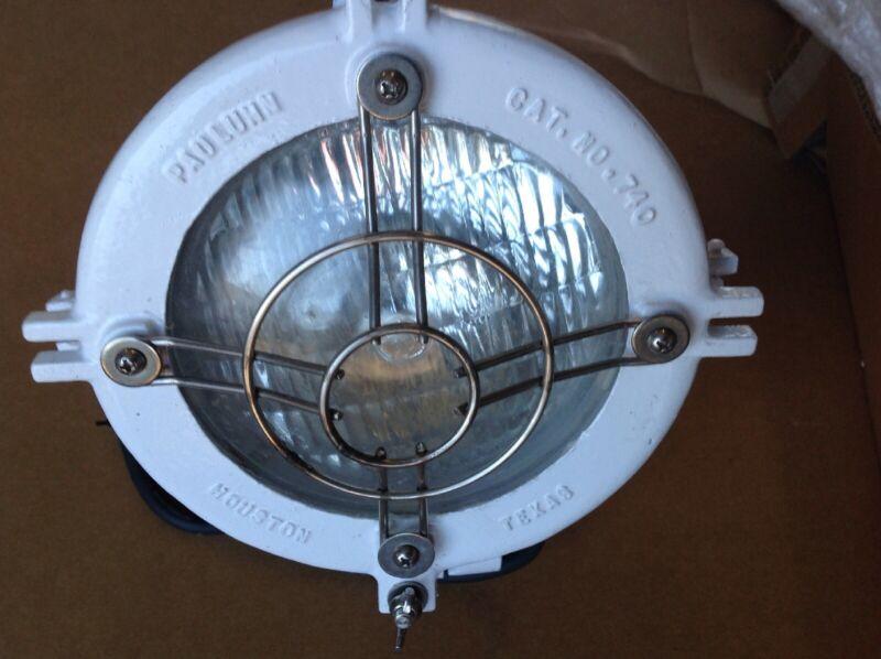 Pauluhn Light Fixture 740ASMRSGRD