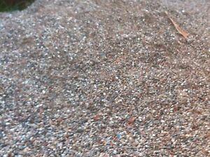 Pebbles/concrete pebbles St Andrews Campbelltown Area Preview