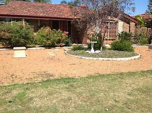 Pea gravel for free Thornlie Gosnells Area Preview