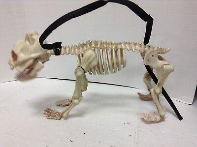 Halloween Boneyard Dog Skeleton Bones Sound Collar Animated Figure Prop spooky