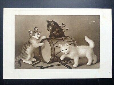 Carte postale fantaisie chat 1251