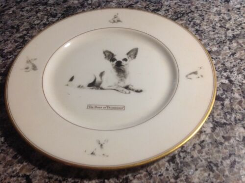 Gorgeous vintage Lenox chihuahua plate! 10 1/2 inches...wonderful!