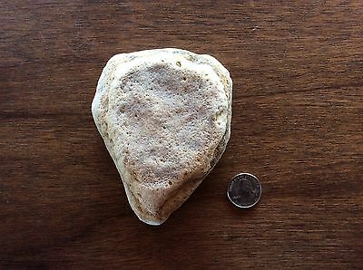 Raised Heart Shaped Valentine Rock 100% Natural Formed Nice Gift Collectible