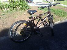 Bike for sale Croydon Burwood Area Preview