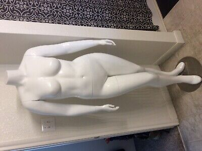 6 Female Mannequin Plus Size Headless Gloss White Finish