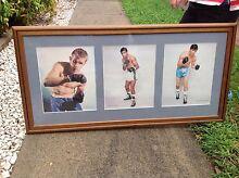 Boxing mounted photo collection Albury Albury Area Preview