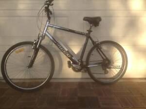 Giant Sedona Hybrid bicycle
