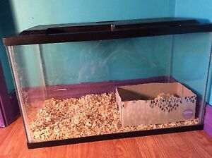 Fish/hampster tank