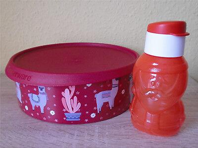 Tupperware LunchBox Brotdose EcoEasy 1 l Trinkflasche Sandwich Box Flasche