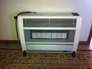 Everdure Brigadier 25mJ natural gas heater, 7 burners Miller Liverpool Area Preview