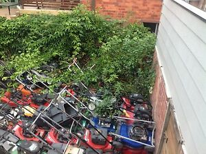 MOWERS MOWERS MOWERS MOWERS MOWERS Kotara Newcastle Area Preview