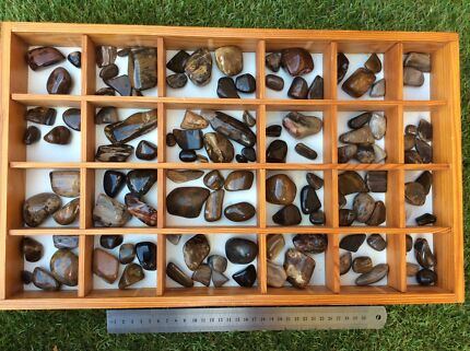 Huge Collection of Polished Petrified Wood Stones