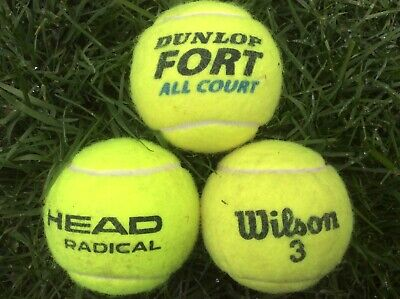 12 Tennis Balls for Practice Play, Ball Games, Throwing for Dogs, Good Bouncing!
