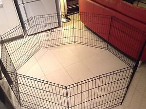 Dog play pen Drummoyne Canada Bay Area Preview