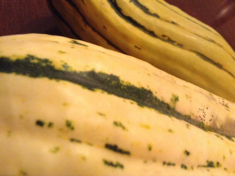 Delicata Squash --12 seeds. Organic heirloom, edible skin. Easy to grow & yummy!