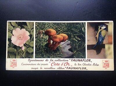 Buvard Faunaflor Cote d'or Chocolats