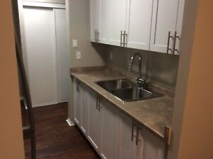 Fully Upgraded 2 Bedroom Suites, Only 1st month's required