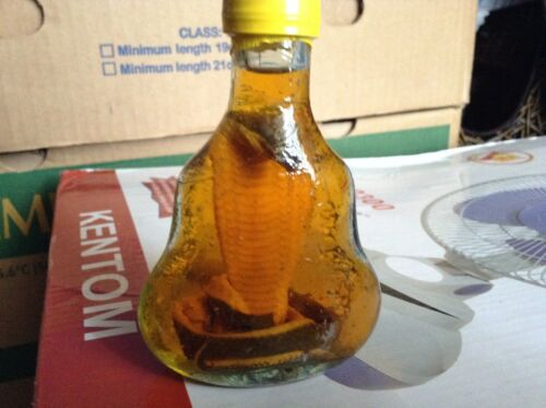 """cobra snake in a small X.O glass bottle 4"""" tall"""