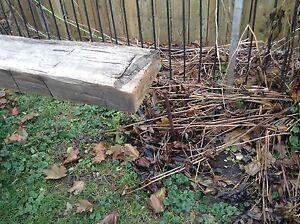 Barn beam plank Belleville Belleville Area image 3