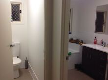 Room to rent Caboolture Caboolture Area Preview