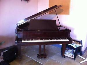 Baby Grand Highgate Hill Brisbane South West Preview