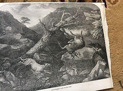 m4-7 ephemera 1849 picture deer stalking the falling deer
